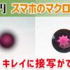 100円でキレイに接写ができる!